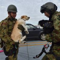 Military servicemen hold dogs during a mission to evacuate people from the roof of a flooded shopping center via helicopter in the city of Joso in Ibaraki prefecture on Friday.  | AFP-JIJI