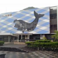 The Taiji Whale Museum in Wakayama Prefecture has withdrawn from the Japanese Association of Zoos and Aquariums. | KUMANO SHIMBUN / KYODO
