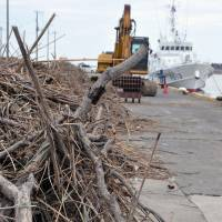 Dead branches and other debris litter a pier at Choshi port in Chiba Prefecture on Sunday. Since last week, workers have been attempting to clean up large amounts of debris with heavy machinery. | KYODO