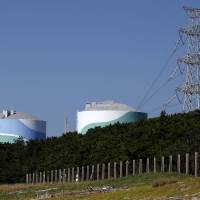 Nuclear option: The Sendai nuclear power station in Satsumasendai, Kagoshima Prefecture, was restarted this year. | REUTERS