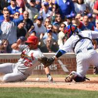 Cardinals lose to Cubs, clinch spot in playoffs