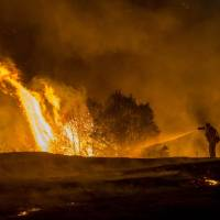 Scorching more than the area of Denmark, 2015 worst U.S. wildfire year on record