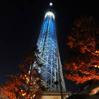 Tokyo Skytree, seen between trees adorned with jack-o'-lanterns, is illuminated with blue lights Saturday as part of a global celebration to mark the 70th anniversary of the United Nations. | YOSHIAKI MIURA