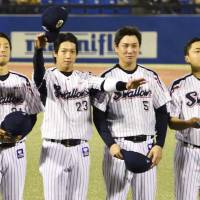 (From left) Tokyo Yakult Swallows players Takahiro Araki, Tetsuto Yamada, Shingo Kawabata and Yuhei Nakamura, seen after the team's Japan Series-ending defeat to the Fukuoka Softbank Hawks on Thursday, helped orchestrate the Central League club's title-chasing efforts this season after back-to-to-back last-place finishes. | KYODO