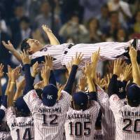 Swallows manager Mitsuru Manaka receives the traditional <em>doage</em> (victory toss) after Friday's pennant-clinching triumph over the Tigers. | KYODO