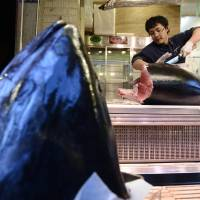 Bigeye tuna prices expected to rise by end of year