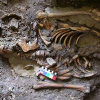 This skeleton, dating from almost 10,000 years ago, was found in the Kotias Klde rock shelter in western Georgia. | REUTERS