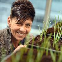 As Earth warms, scientist leading research into drought-resistant crops