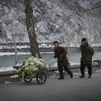Poor harvest could spell hard winter for rural North Koreans