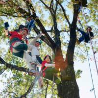 Outdoor hobby takes love of trees to new heights