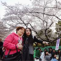 Chinese tourists take selfie photos under cherry blossoms in Tokyo's Ueno Park in April. A survey shows that shopping is not the only reason they visit Japan. | KYODO
