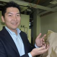 Yamagata biotech firm synthesizes spider silk to spin web of innovative products