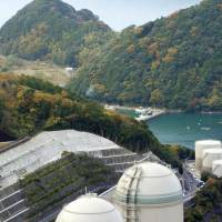 Reactor No. 3 and No. 4 at Kansai Electric Power Co.'s Takahama plant in Fukui Prefecture are seen in this 2014 file photo. | KYODO
