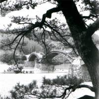 According his daughters, Woollacott cherished this photo of Iwakuni's famous Kintai Bridge so much that he enlarged it and used it to wallpaper their dining room in London. | DERRICK WOOLLACOTT