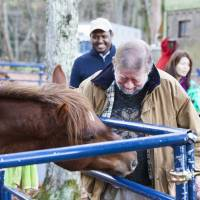 Horsing around: Old Nic greets Chacha at the C.W. Nicol Afan Woodland Trust as Ethiopian Ambassador Markos Rike looks on. | CONAN MORIMOTO