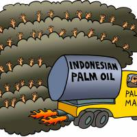 Putting out Indonesia's fires