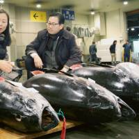 Tuna caught in Vietnamese waters are auctioned at a wholesale market in Osaka on Friday.   KYODO