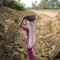 A worker carries a bowl filled with earth during excavations to create a canal along the purported ancient route of the mystical Saraswati river between the villages of Bita and Nagli in Haryana state's Yamuna Nagar district on Dec. 9. | BLOOMBERG