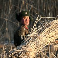 A North Korean soldier gathers straw in a field in Sinuiju on Wednesday, photographed from across the border in Dandong in northeastern China's Liaoning province. | AP