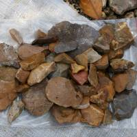These stone tools, which were found lying on the gravelly surface near Talepu on the Indonesian island of Sulawesi, have been dated to least 118,000 years old, long before the arrival of modern humans. | REUTERS