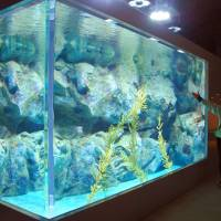 A large water tank is built in December inside Moguranpia, a tsunami-hit aquarium in Kuji, Iwate Prefecture, which is expected to reopen in April.
