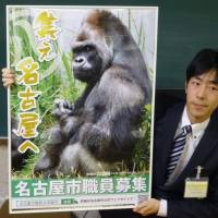 Nagoya taps zoo gorilla Shabani's star power for city recruitment video