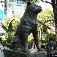 A city in Akita Prefecture may seek the loan of this statue of a dog considered a model of fidelity. | KYODO