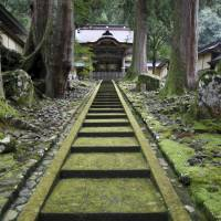 Japan's rural temples see the light in luxury tourism