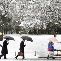 People in Tokyo's Suginami Ward trek through the city's first snowfall of the year.  | KYODO