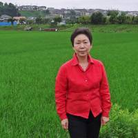The future of rice farming in Japan