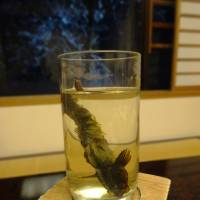 Kajika sake comes with a marinated fish. | MANDY BARTOK