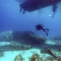 Between the diver and the deep blue sea: Divers explore a wrecked DC3 aircraft in Majuro lagoon, Marshall Islands. | AP