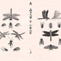 Under cover bugs: The printed paper case of the Swan River Press edition of 'Insect Literature' by Lafcadio Hearn, designed by Meggan Kehrli. | SWAN RIVER PRESS