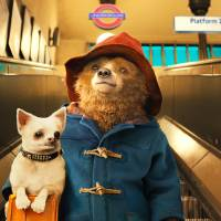 'Paddington': Can the 'other bear' crack the Japanese market?