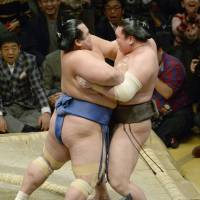 Kotoshogiku (left) forces yokozuna Hakuho out of the ring during their bout at the New Year Grand Sumo Tournament on Wednesday.   KYODO