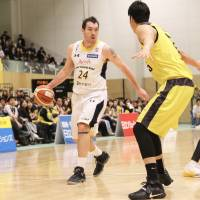 Tochigi's Brenton a multitalented player