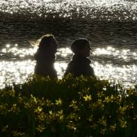 Flower promenade: A couple strolls through blooming daffodils in St. James Park, London. For a unique date experience, attend a workshop together on megalith carving at Southwark Cathedral. | REUTERS