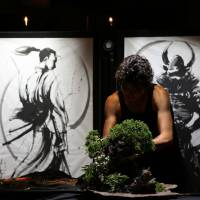 Bonsai world's 'black sheep' aims to inject 'cool' into traditional art form