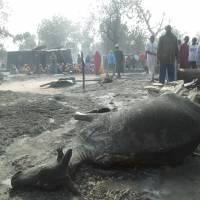 People gather around a dead animal and burned out houses following an attack by Boko Haram in Dalori village 5 km (3 miles) from Maiduguri, Nigeria , Sunda. A survivor hidden in a tree says he watched Boko Haram extremists firebomb huts and listened to the screams of children among people burned to death in the latest attack by Nigeria's homegrown Islamic extremists. | AP