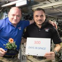 In this Jan. 21 photo provided by NASA, one-year mission crew members Scott Kelly of NASA (left) and Mikhail Kornienko of Roscosmos celebrate their 300th consecutive day in space. By spending 340 days aboard the International Space Station, the astronauts will help scientists understand what happens to the human body while in microgravity for extreme lengths of time. Kelly is holding a zinnia plant grown in space as part of the Veggie experiment aboard the ISS. | AP