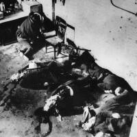 The bodies of six of the seven men who were slain in the gangland Valentine's Day massacre on Chicago's North Side are seen on Feb. 14, 1929. | AP