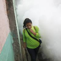 Zika fight seen snarled by sexual spread, heat-fueled mosquito hunger; Brazil birth defects surge