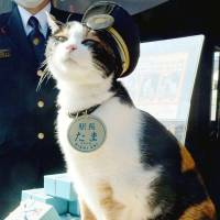 A cat that drew trade to a struggling railroad line has entered Wakayama Prefecture's Hall of Fame. | KYODO
