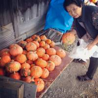 Happiness is a warm farm: How home cooking is reviving rural Yamagata