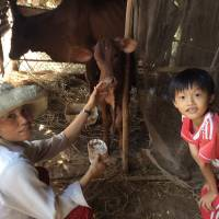 "Happy customers: Phan Thi Hong Nguyen and her son are among the many families in Ben Tre province helped by Seed To Table's ""cow bank."" 