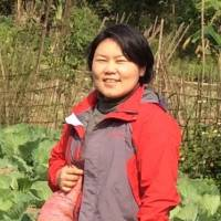 Green shoots: Seed To Table founder Mayu Ino stands in an organic vegetable garden in Hoa Binh province. Ino has been in Vietnam on and off for nearly 20 years, and she still remembers how much her mouth muscles used to ache as she tried to master the six tones of Vietnamese pronunciation.   COURTESY OF MAYU INO
