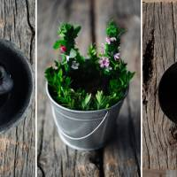 Some of the dishes Guzman has created include (from left) a 'puree of rock plants' carefully formed to look like an actual rock; sea sticks — bread sticks dipped in squid ink and covered with edible flowers and herbs; and a tres leches dessert with sheep, cow and goat milk. | ARACELI PAZ