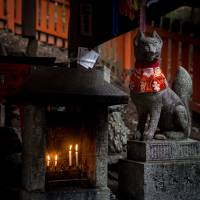 One of many foxes greet travelers on their way to the shrine. | BENJAMIN PARKS