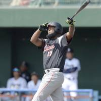 The Marines' Yamaico Navarro hits a home run during a practice game against the Dragons on Feb. 20, in Chatan, Okinawa. | KYODO