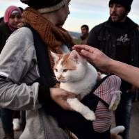 A Syrian woman holds her cat named Taboush, which she brought with her from Syria, at the makeshift camp at the Greek-Macedonian borders, near the village of Idomeni, where thousands of refugees and migrants are stranded, on Tuesday. | AFP-JIJI